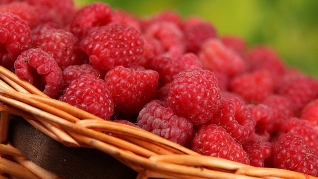 fruits-nourriture-framboises-720x1280