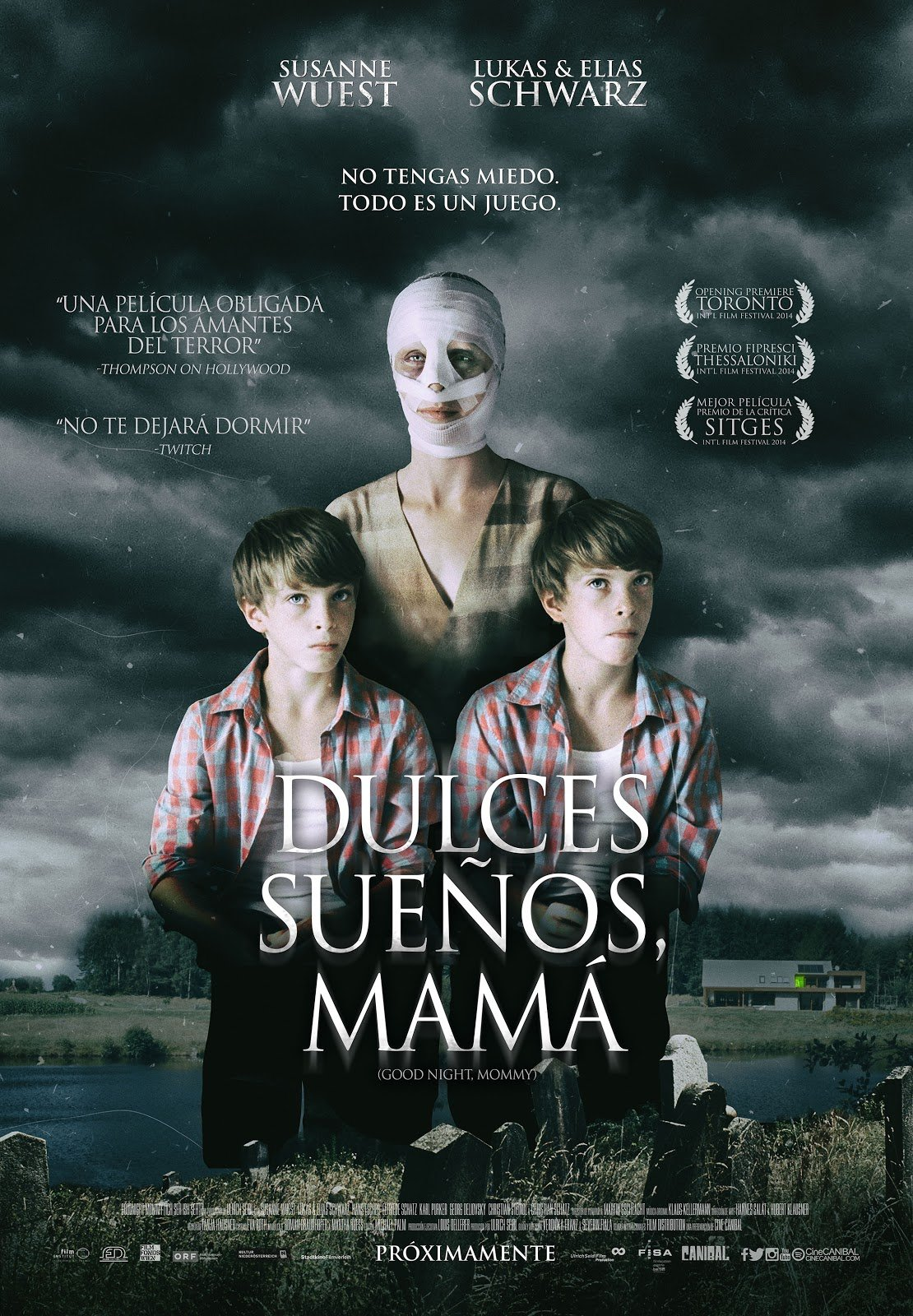 Good Night Mommy Poster