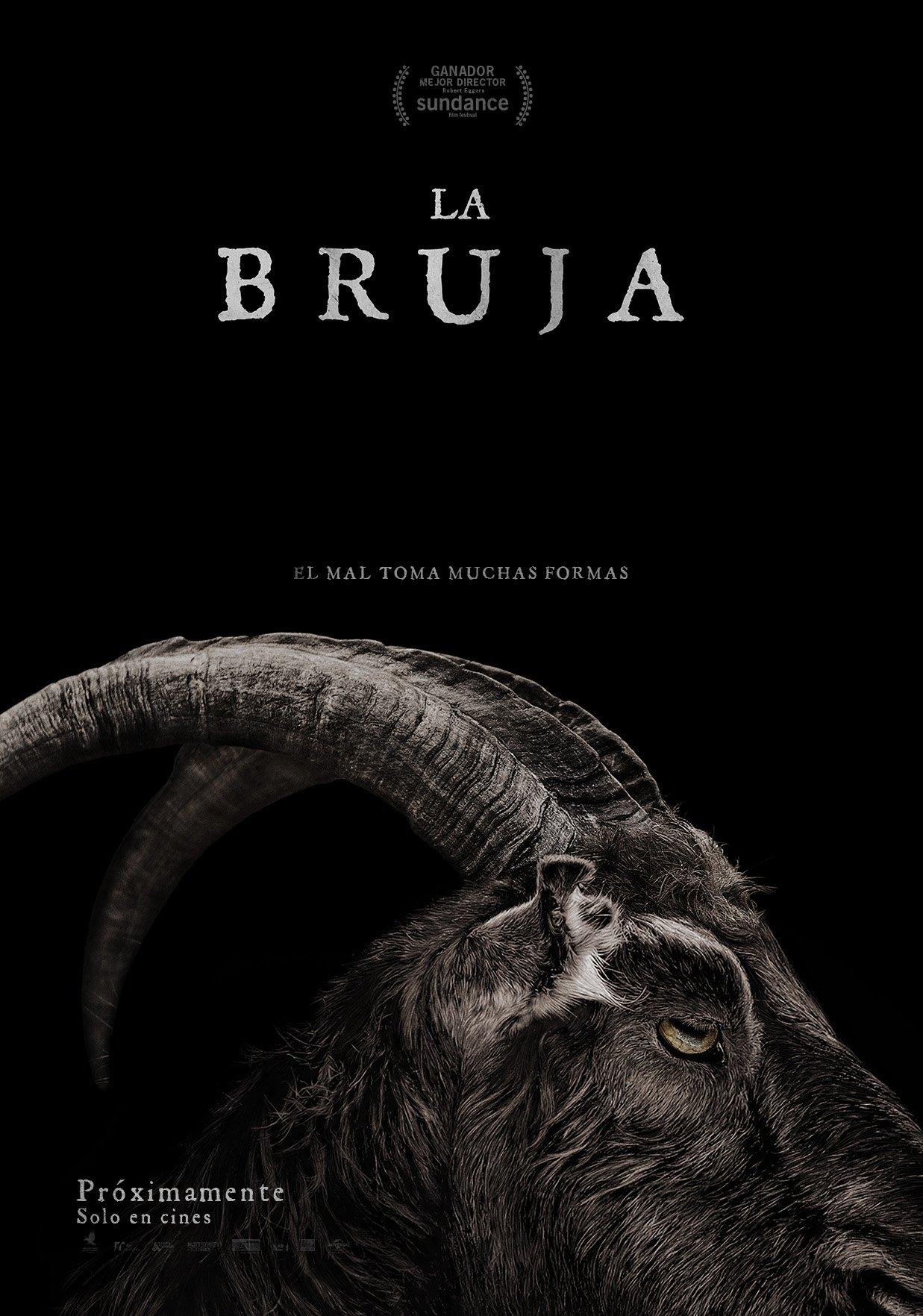 Resultado de imagen para la bruja 2016 poster