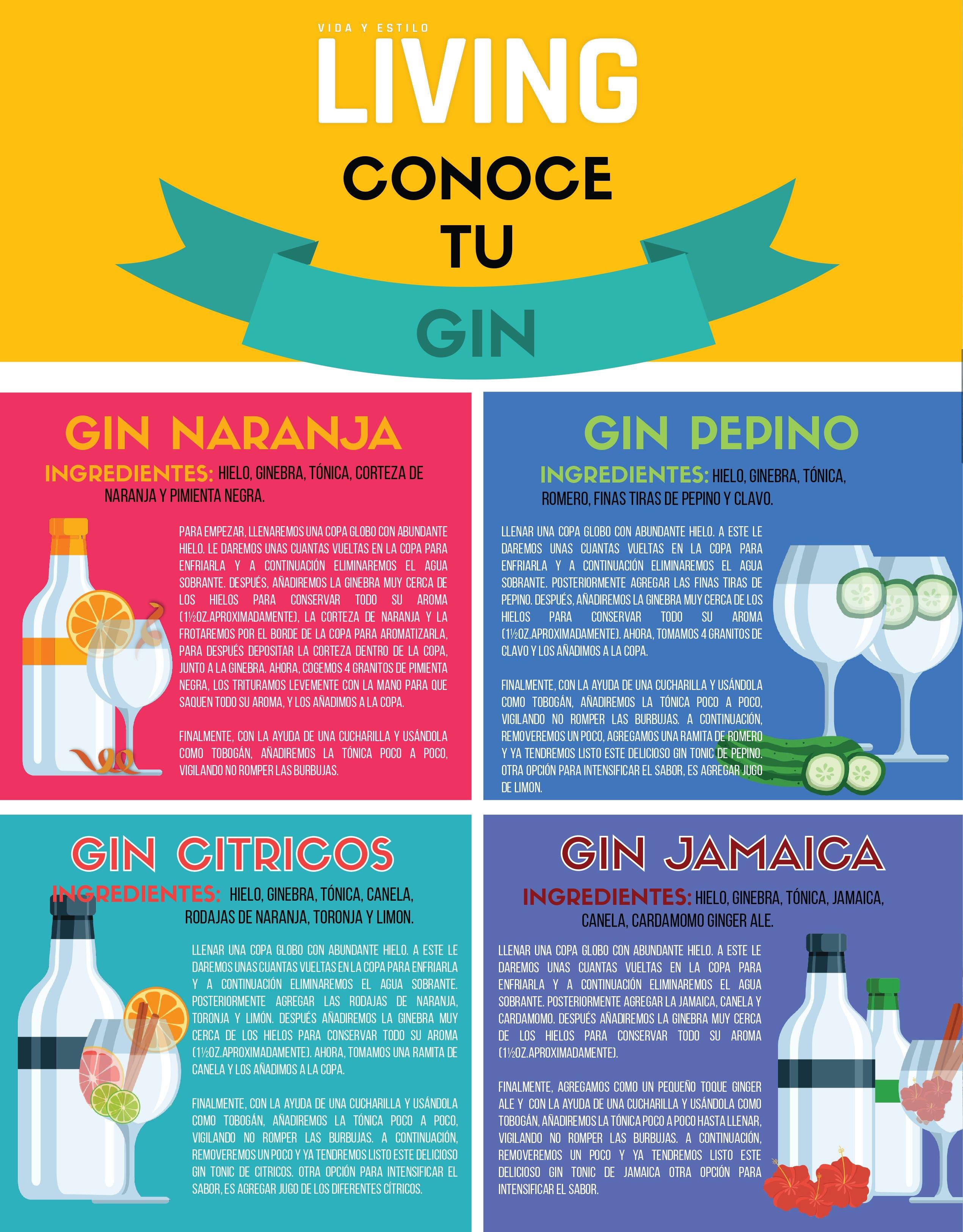 Infografía Living Conoce Tu Gin